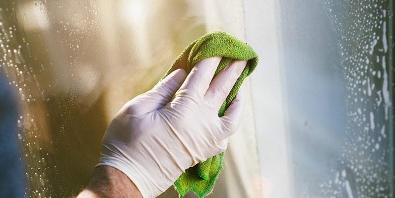 Reinigen von Glasflächen Pollen